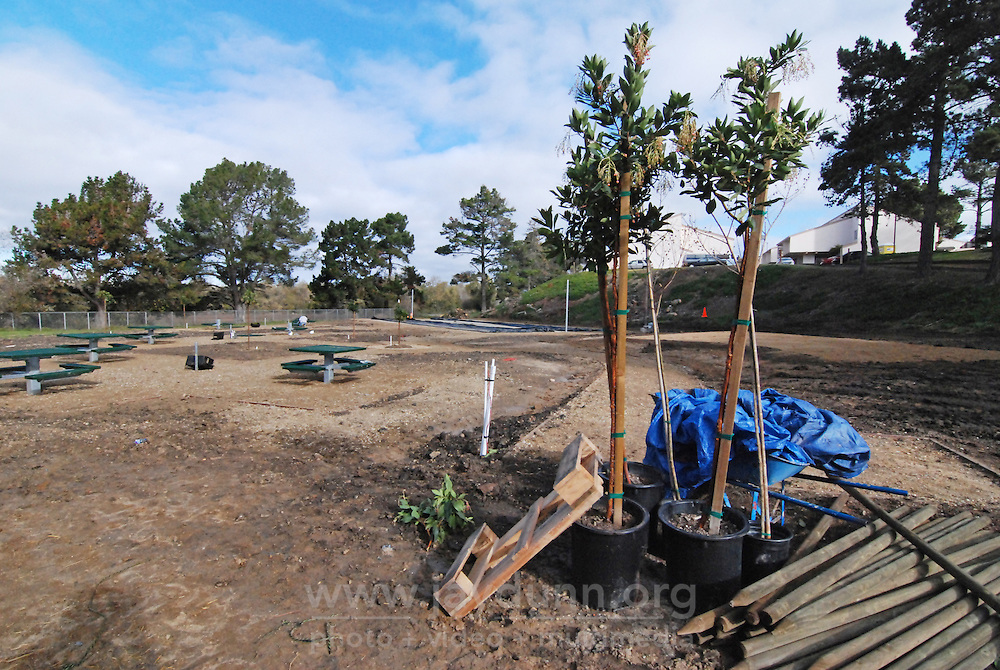 A few remaining trees and stakes to be planted, seen on December 18th, 2015 at the Acosta Plaza Recreation Area project in east Salinas, CA.