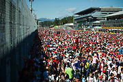 September 3-5, 2015 - Italian Grand Prix at Monza: Tifosi at Monza