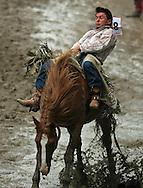 Bareback Rider Scott Wayne Montague scores an 84 on 7 Sport News BR, 28 July 2007, Cheyenne Frontier Days