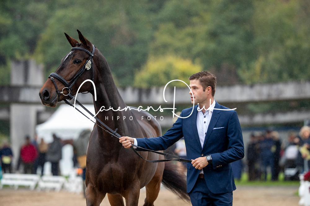 De Cleene Wouter, BEL, Magic Dream van't Hulsbos<br /> Mondial du Lion - Le Lion d'Angers 2019<br /> © Hippo Foto - Dirk Caremans<br />  16/10/2019