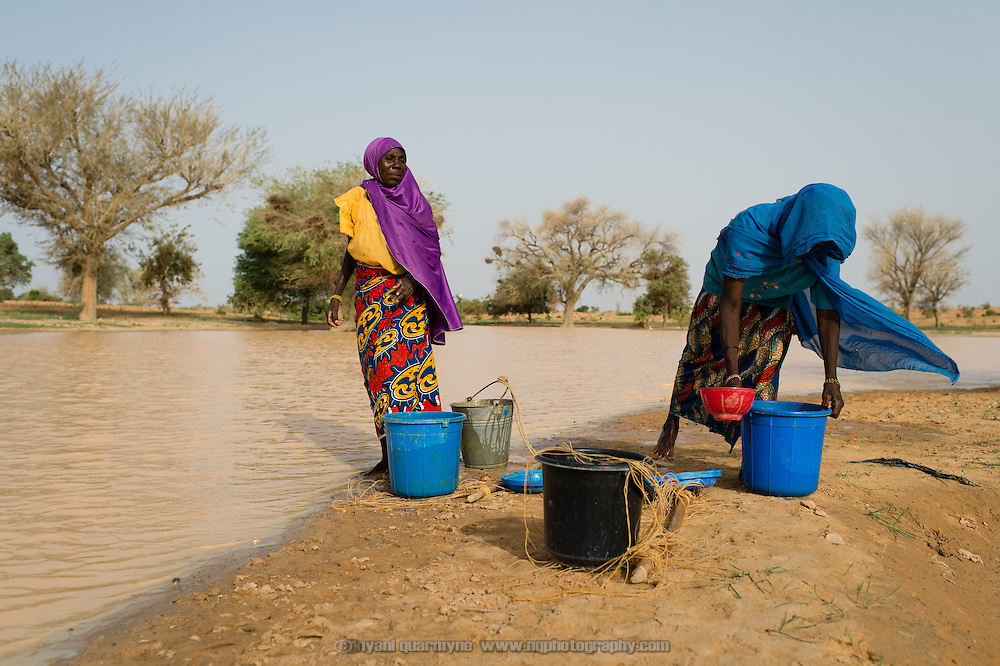 Seasonal pools such as this one near the village of Gadirga in the Commune of Soukoukoutan in the Dosso Region of Niger alleviate demand on improved water sources during the rainy season, providing people with an alternate water source for watering animals, doing laundry and bathing.