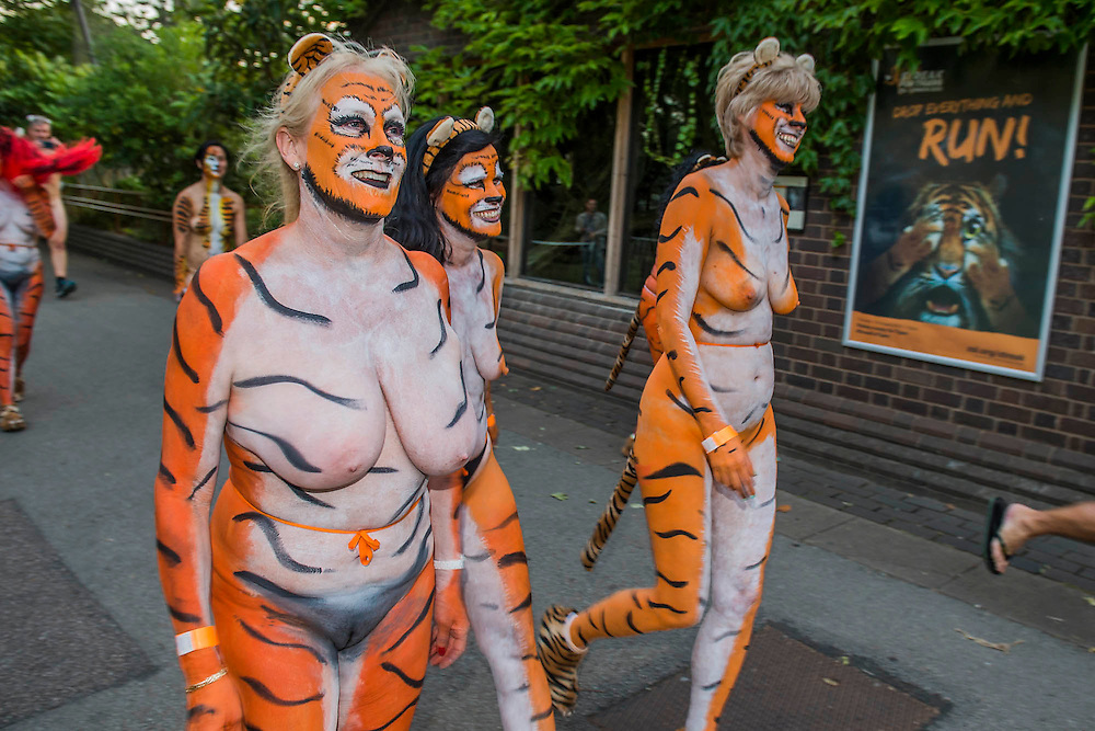 A group of air hostesses, with all over body paint,  calling themselves the flying tigers on the run - Naked runners take part in the ZSL London Zoo Streak for Tigers. They are raising money for tigers whose group name is, apparently, a streak.