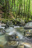 cascades du hérisson, Frankreich