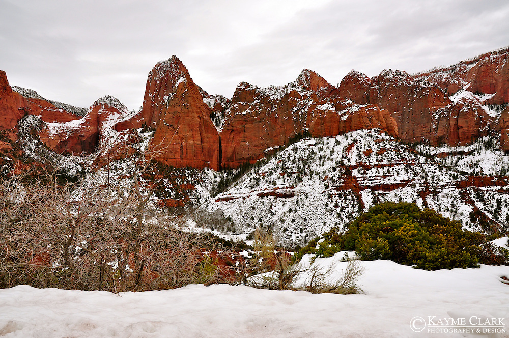 Zion National Park, Utah, United States of America