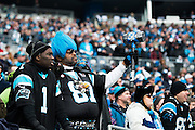 January 17, 2016: Carolina Panthers vs Seattle Seahawks. Carolina Panthers fans