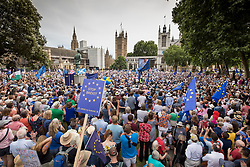 © Licensed to London News Pictures. 23/06/2018. London, UK. The People's Vote March for a second EU referendum listens to speeches in Parliament Square. Photo credit: Peter Macdiarmid/LNP