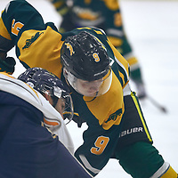 1st year forward, Conner Chaulk (9) of the Regina Cougars during the Men's Hockey Home Game on Sat Oct 13 at Co-operators Center. Credit: Arthur Ward/Arthur Images