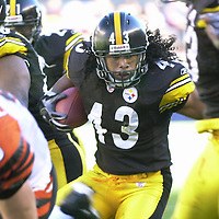 Pittsburgh Steelers safety Troy Polamalu intercepts a Cincinnati Bengals pass and returns it 26 yards for a touchdown in the fourth quarter at Heinz Field in Pittsburgh Pennsylvania on October 3, 2004. The Steelers defeated the Bengals 28 to 17.