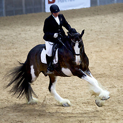 Gairloch Challenger Dressage to Music Demo