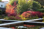 Modern Garden 1022