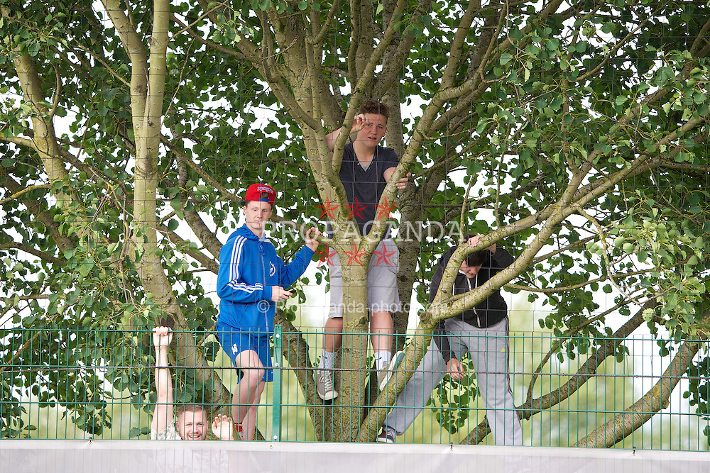 NEWPORT, WALES - Monday, August 12, 2013: Wales supporters climb a tree to watch the players training at the FAW National Development Centre at Dragon Park ahead of the International friendly against the Republic of Ireland. (Pic by David Rawcliffe/Propaganda)