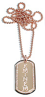 Gold Diamond Dog Tag Pendant spelling eminem