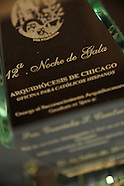 2010 Noche De Gala at Chicago Hilton and Towers