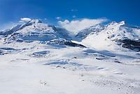 Winter scene near Sunwapta Pass and the Columbia Icefields, Jasper National Park Alberta Canada