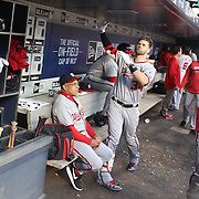 NEW YORK, NEW YORK - May 19: Bryce Harper #34 of the Washington Nationals and Max Scherzer #31 of the Washington Nationals during their pre game dugout routine before the Washington Nationals Vs New York Mets regular season MLB game at Citi Field on May 19, 2016 in New York City. (Photo by Tim Clayton/Corbis via Getty Images)