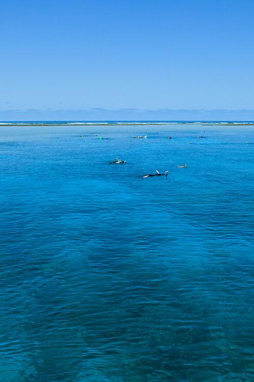 Snorkeling on Agincourt Reef - Great Barrier Reef
