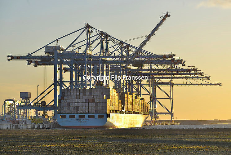 Nederland, the Netherlands, Rotterdam, 23-6-2017Containeroverslag in de rotterdamse haven op de 2e maasvlakte, bij apm terminals, Een koreaans schip wordt gelost.Foto: Flip Franssen