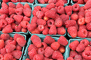 Salinas Valley Raspberries, Old Monterey Farmers Market, California