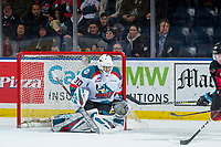 KELOWNA, CANADA - JANUARY 26: Roman Basran #30 of the Kelowna Rockets defends the net against the Vancouver Giants  on January 26, 2019 at Prospera Place in Kelowna, British Columbia, Canada.  (Photo by Marissa Baecker/Shoot the Breeze)