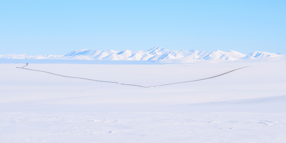 The trans-Alaska pipeline stretches for miles through the North Slope.