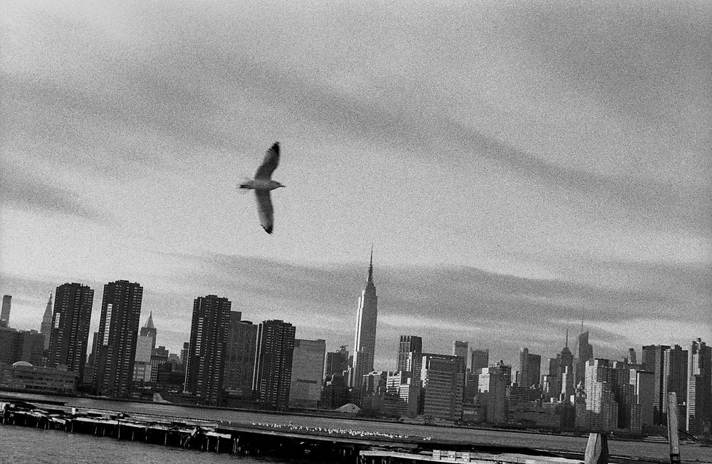 NY, NY 2009.I See A Darkness