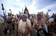 South Africa. Kwa Zulu Natal. Reenactment of the battle of Isandlwana. Zulu warriors after the defeat of the Red Coats.©Zute Lightfoot.DVD0018