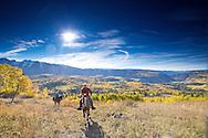 horseback riding the autumn mountain landscape.  engineer mountain, san juan range, colorado rocky mountains of durango.