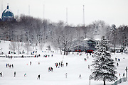 snow fun mount royal sledding