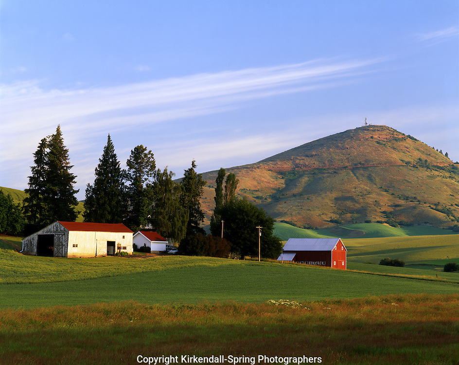 AA07291-01....WASHINGTON - Farm at the base of Steptoe Butte in Palouse Country.