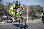 #156 (AZUERO Domenica) ECU  at Round 9 of the 2019 UCI BMX Supercross World Cup in Santiago del Estero, Argentina