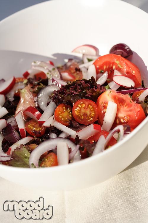 Closeup of spring salad