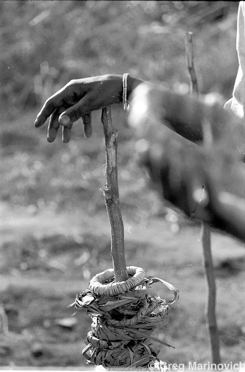 Boys from villages falling under the Tshivase kingdom in Venda, South Africa undergo traditional initiation which includes circumcision, are brought food by girls who are undergoing their own initiation, 2001. Greg Marinovich