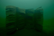Fishiding (artificial fish habitat. Pictured is the Fishadow model.)<br /> <br /> Engbretson Underwater Photography