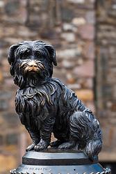 Statue of Greyfriars Bobby in Old Town of Edinburgh, Scotland, UK