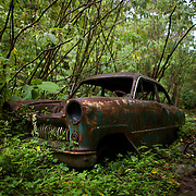 An old 1950s era car sits along the Ngobe Indian trail in the Cloud Forest near Boquete, Panama.