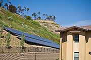 Solar Panels On Hillside
