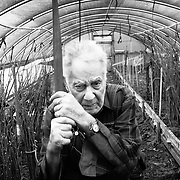 """""""We want to protect what we have. I'm a farmer 100 percent. I love this farm. People don't understand what it's like, how much it means to me..."""" said Jack Chapin, 85, a life-long farmer, standing in one of the greenhouses amidst young hazelnut trees. The passage of State Measure 37 means that his family is """"basically waiting for me to die,"""" so they can sell the farm to housing developers."""