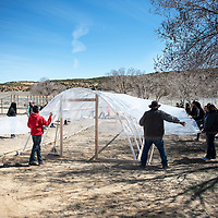 Dibe Yazhi Habitiin Community School seventh and eighth grade students build a hoop house Thursday, March 28 on the school grounds in Crownpoint. A hoop house is an inexpensive way to build a greenhouse.