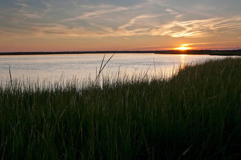 2011 August 23: Corson's Inlet, Ocean City, New Jersey