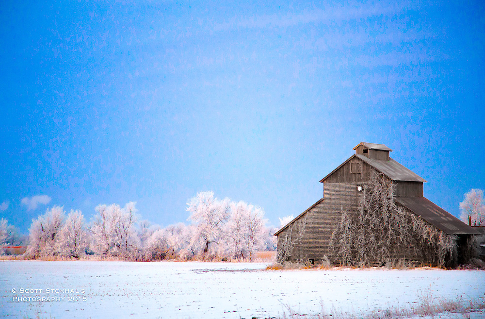 A lone barn and frosted trees fill the vast farm fields mid-winter in Wisconsin