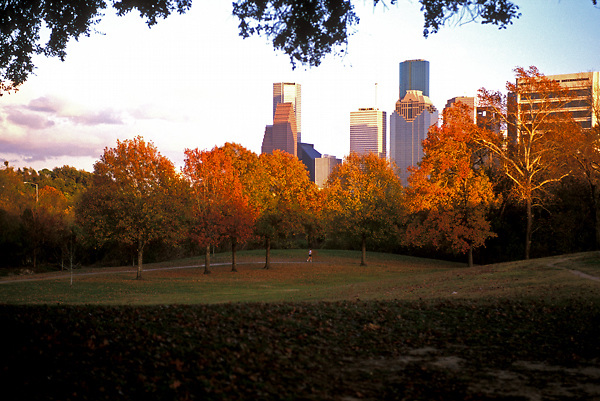 Stock photo of the view of the Houston skyline from Buffalo Bayou park as the sun sets