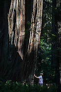 North Coast Parks for State Parks. June, 24-26, 2015