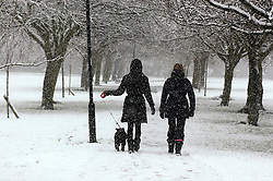 (c) Licensed to London News Pictures 14/01/2013.Heavy snow falling on The Stray, Harrogate, N Yorks.Photo credit : Sam Atkins/LNP