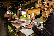 Dr. Joanne Edney cleaning fish from the days catch.