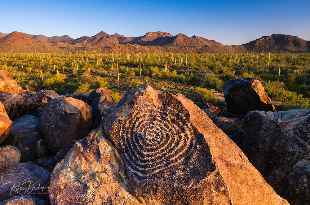 Petroglyphs on Signal Hill, Saguaro National Park (Tucson Mountain District), Tucson, Arizona USA