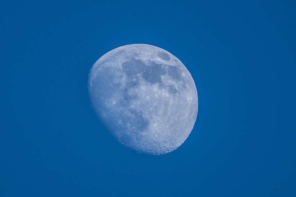 This is a picture of the rising Waxing Gibbous Moon.<br /> <br /> Camera <br /> NIKON D610<br /> Lens <br /> TAMRON SP AF 150-600mm F5-6.3 VC USD A011N<br /> Focal Length <br /> 600<br /> Shutter Speed <br /> 1/800<br /> Aperture <br /> 6.3<br /> ISO <br /> 200
