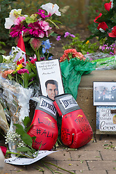 Legendary heavyweight boxing champion Muhammad Ali, a Louisville, Ky. native, died Friday, June 3, 2016. Murals and tributes could be seen across his hometown as people mourned the charismatic sports figure.
