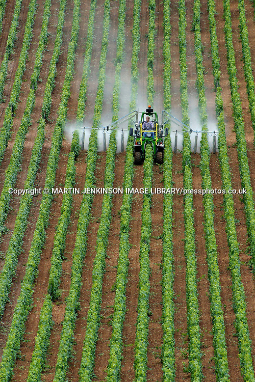 Tractor spraying vines, Beaune France.