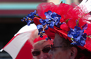 White and blue help add a patriotic flavor to the headwear of the ladies of the Red Hat Society during the Memorial Weekend Grand Parade in Mackinaw City, Michigan.