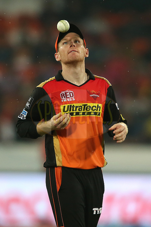 Eoin Morgan of Sunrisers Hyderabad during match 22 of the Vivo IPL 2016 (Indian Premier League) between the Sunrisers Hyderabad and the Rising Pune Supergiants held at the Rajiv Gandhi Intl. Cricket Stadium, Hyderabad on the 26th April 2016<br /> <br /> Photo by Shaun Roy / IPL/ SPORTZPICS
